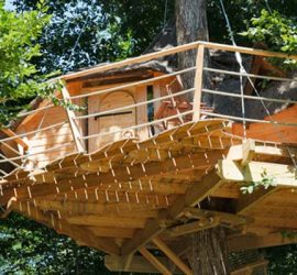 cabane dans les arbres Centre